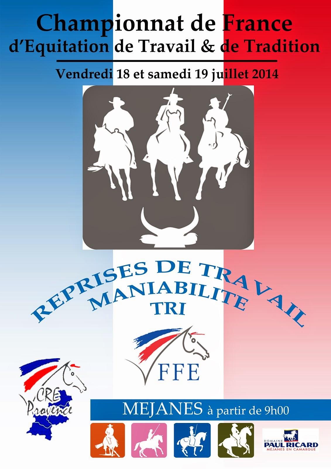 Championnat de France 2014 FFE équitation de Travail