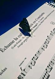 mariposa y partitura-Iguazú en Concierto 2018