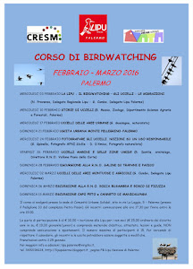 corso di birdwatching febbraio 2016