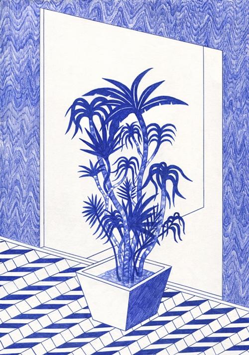 15-Plante-Copie-Kevin-Lucbert-Ballpoint-Biro-Pen-Drawings-www-designstack-co
