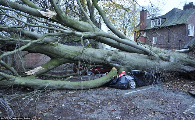 Northern Europe battered: Storms Gorm and Clodagh deliver winds of 100mph! Tens of thousands without power more flooding throughout the UK  2EED76A500000578-3339049-image-a-127_1448889362047