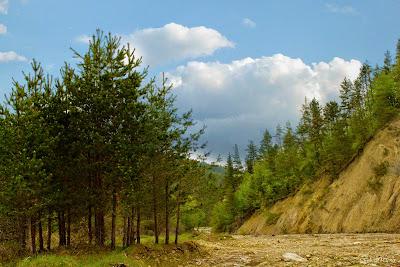 Peisaj - landscape - primavara foto 8