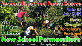 PFC Permaculture Forest Course 2021
