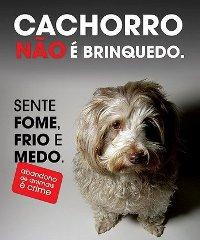 ABANDONO DE ANIMAIS É CRIME!!!