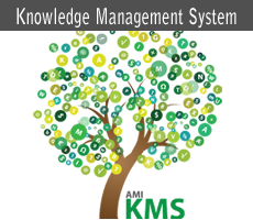 knowledge management system thesis Systems are built knowledge management solutions have proven to be most successful in the capture, storage introduction to knowledge management 5.