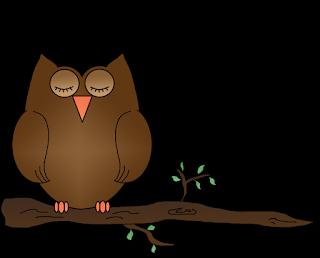 s320/owlsleepingbranch1