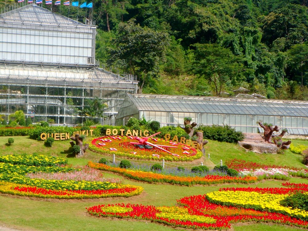 Ma wenn jardin botanique de la reine sirikit for Jardin botanique 78