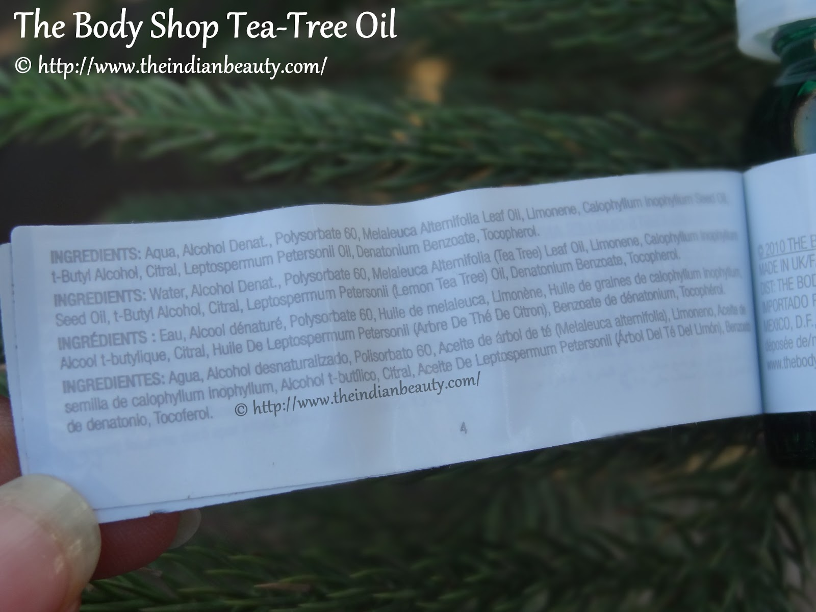 The Body Shop Tea Tree Oil Review Indian Beauty Blog 10ml Ingredients