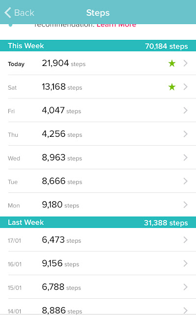 FitBit Charge HR Steps