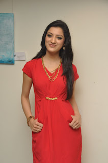 Richa Panai Yamudiki Mogudu Heroine New Photos