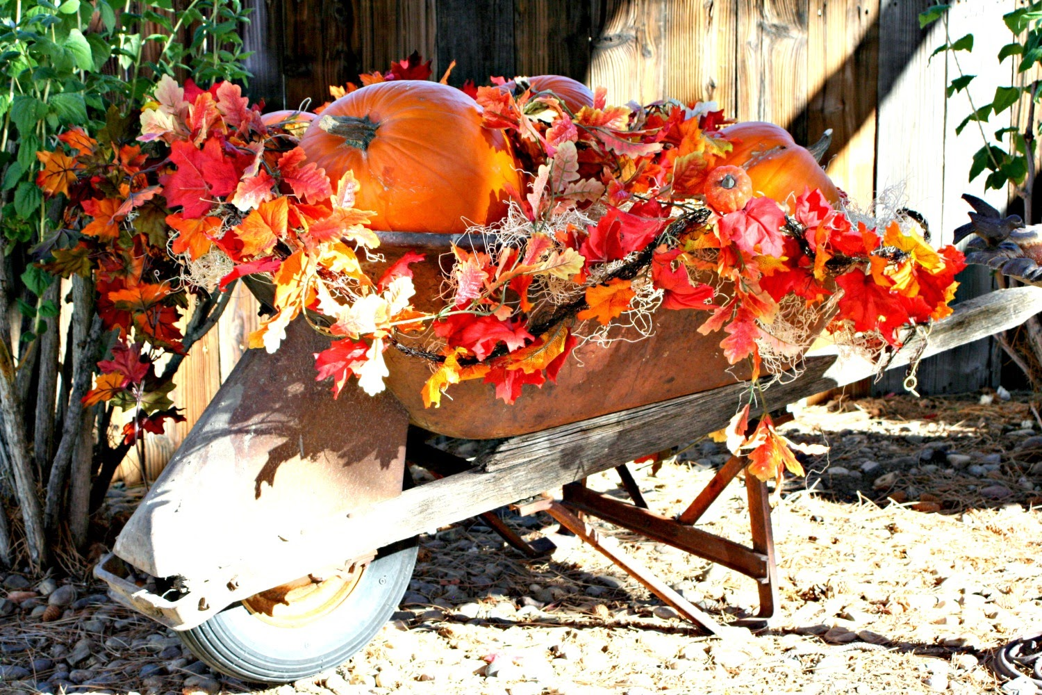 Marvinsdaughters Fall Outdoor Decor