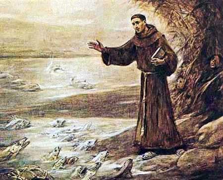 Capitulo 5 sermao de santo antonio aos peixes analise