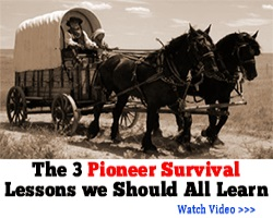 Pioneer Survival Lessons