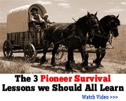 Pioneer Survival Lessons