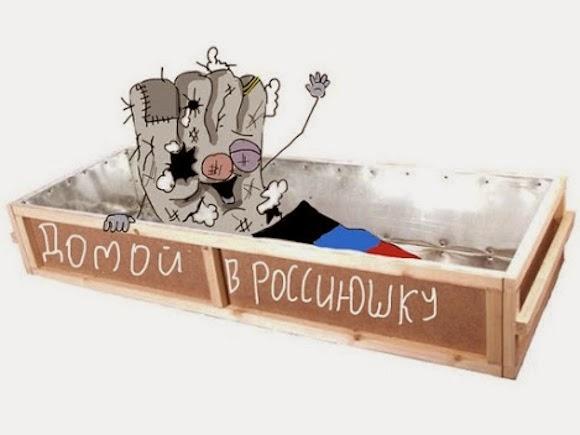 """""""Родственники не верят и удивляются"""", - многодетная семья уехала из Подмосковья и поселилась в """"логове бандеровцев"""" - западной Украине - Цензор.НЕТ 9780"""