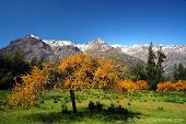 Selección de paisajes de Chile por estaciones del año