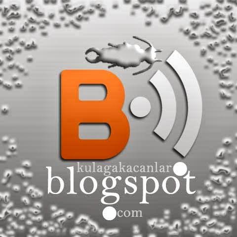 Blogspot neden önemli