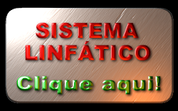 SISTEMA LINFTICO