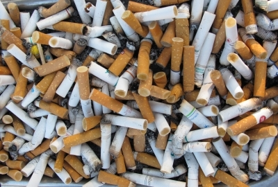 online help for students informative essay on smoking informative essay on smoking