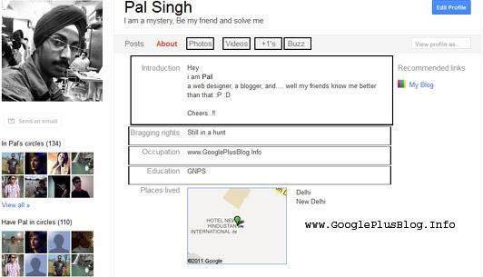 Google Plus Profile Tabs