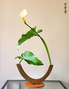 Ikebana de la semana
