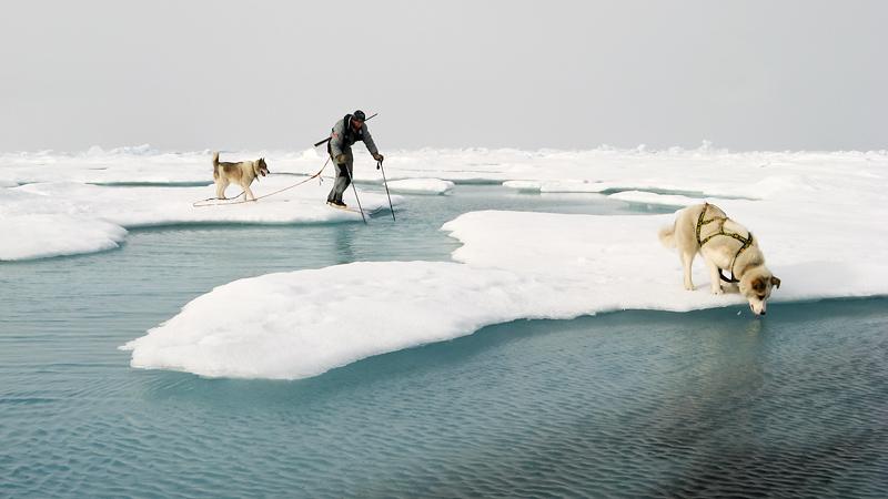 inimene ja koer ületamas jää lahvandust, a man and dog crossing the lead