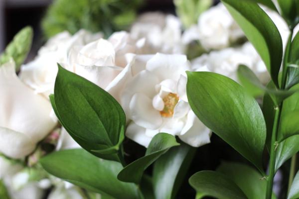Confetti Dots Blog   Anniversary Flowers