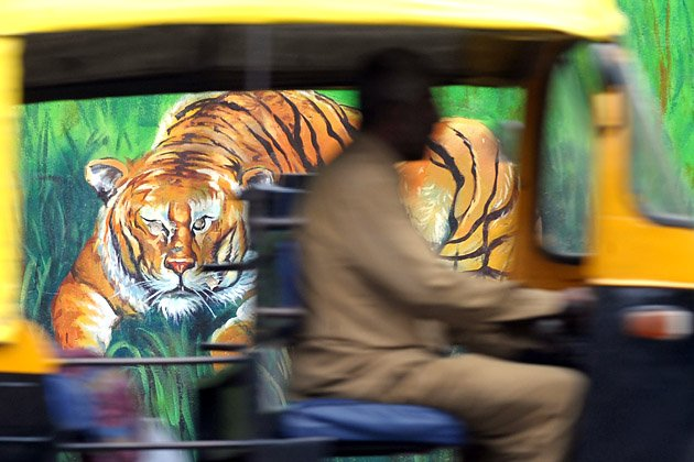 Lukisan cantik mural di jalanan for Mural yang cantik
