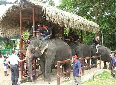 developing ecotourism in malaysia essay Searches related to promoting tourism in malaysia accurate essays about -  147  importance to the development of tourism, the tourism how to promote  local.