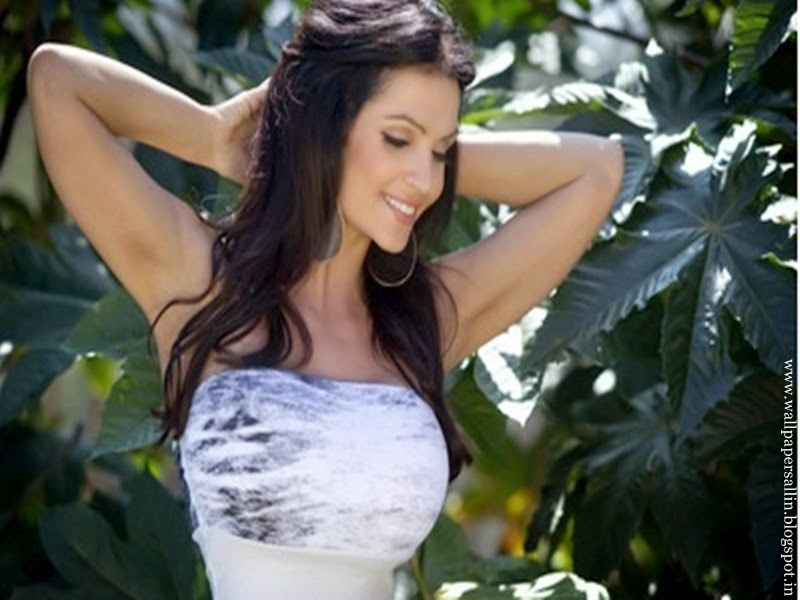 denise milani hd wallpaper