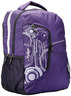 Buy Skybags Surf Polyurethane Purple Casual Backpacks at Rs. 1042 only
