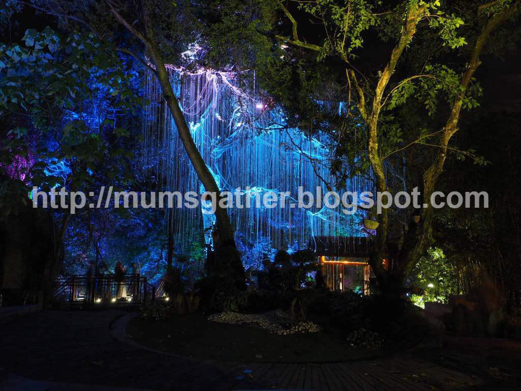 Penang Secret Avatar Garden Review And Visitor Tips