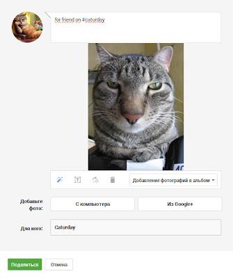 поделиться красивой фотке в популярном сообществе Google+ для получения плюсов