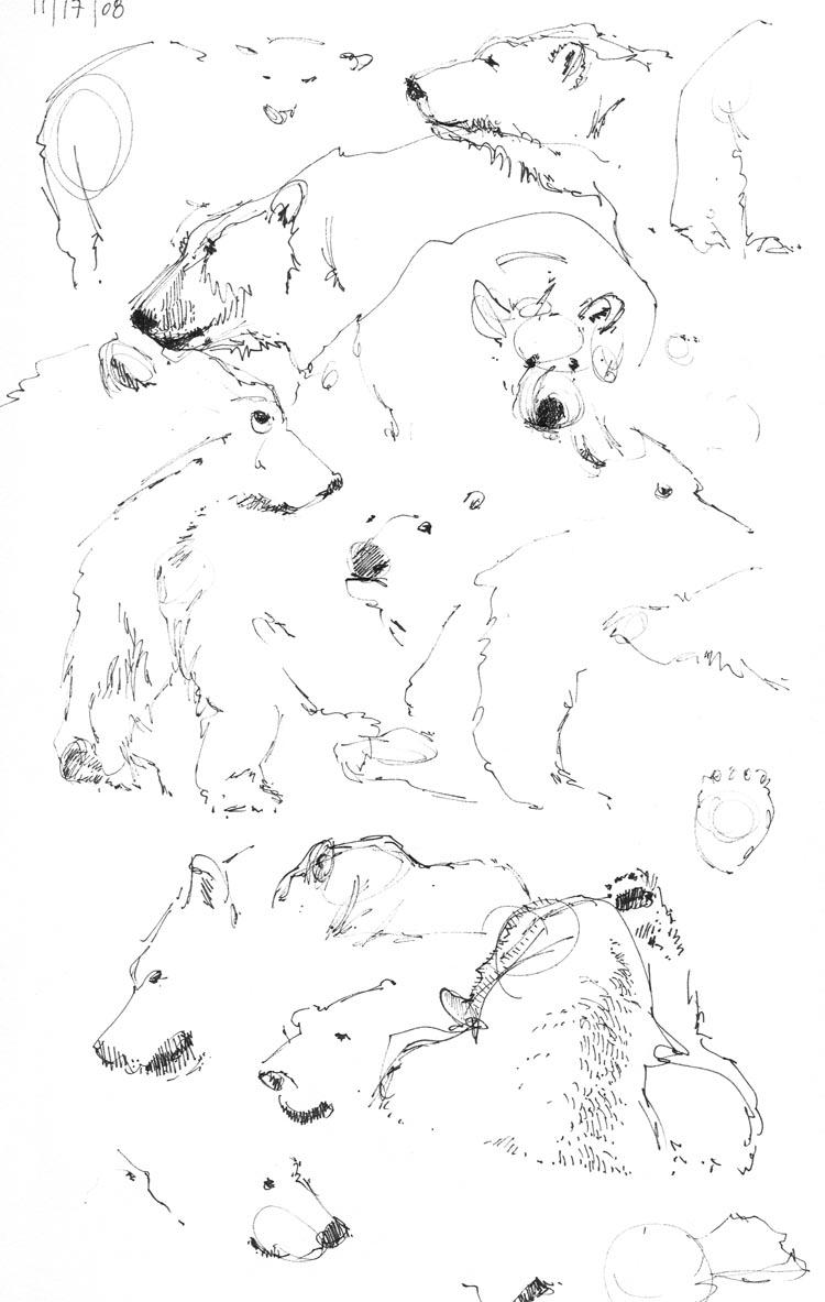 most beasts polar bears
