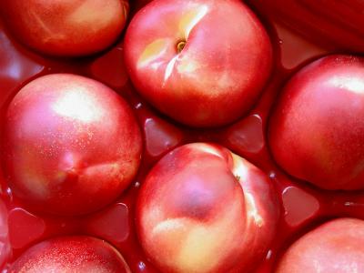 Geroosterde nektariens