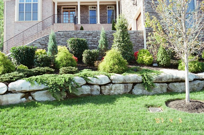 Front yard landscaping ideas home design elements for Front yard lawn ideas