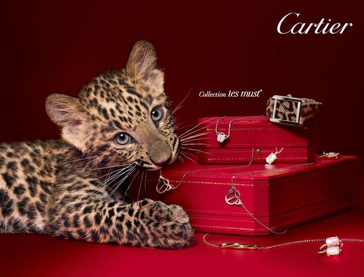 Cheetah Print Baby Girl Room