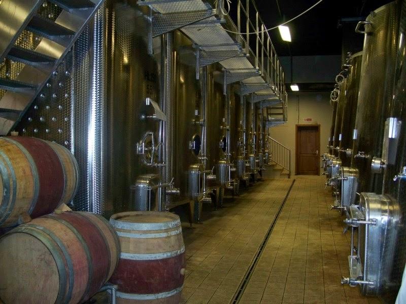 fermentation room at Poliziano winery