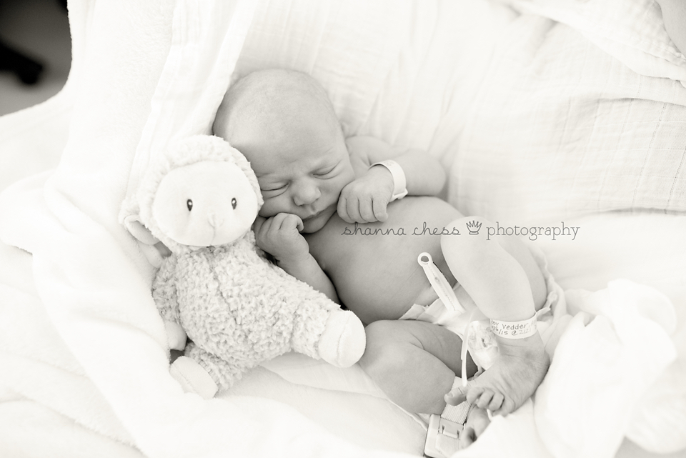 eugene springfield oregon newborn photographer fresh 48 hospital