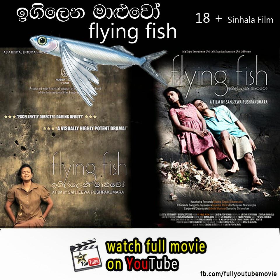 Fish documentary online dating