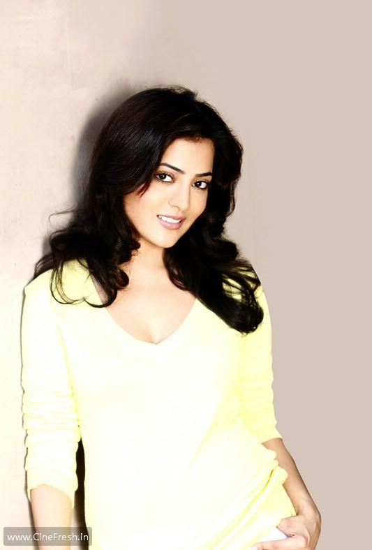 Nisha Agarwal New Hot Stills Nisha Spicy Photos wallpapers