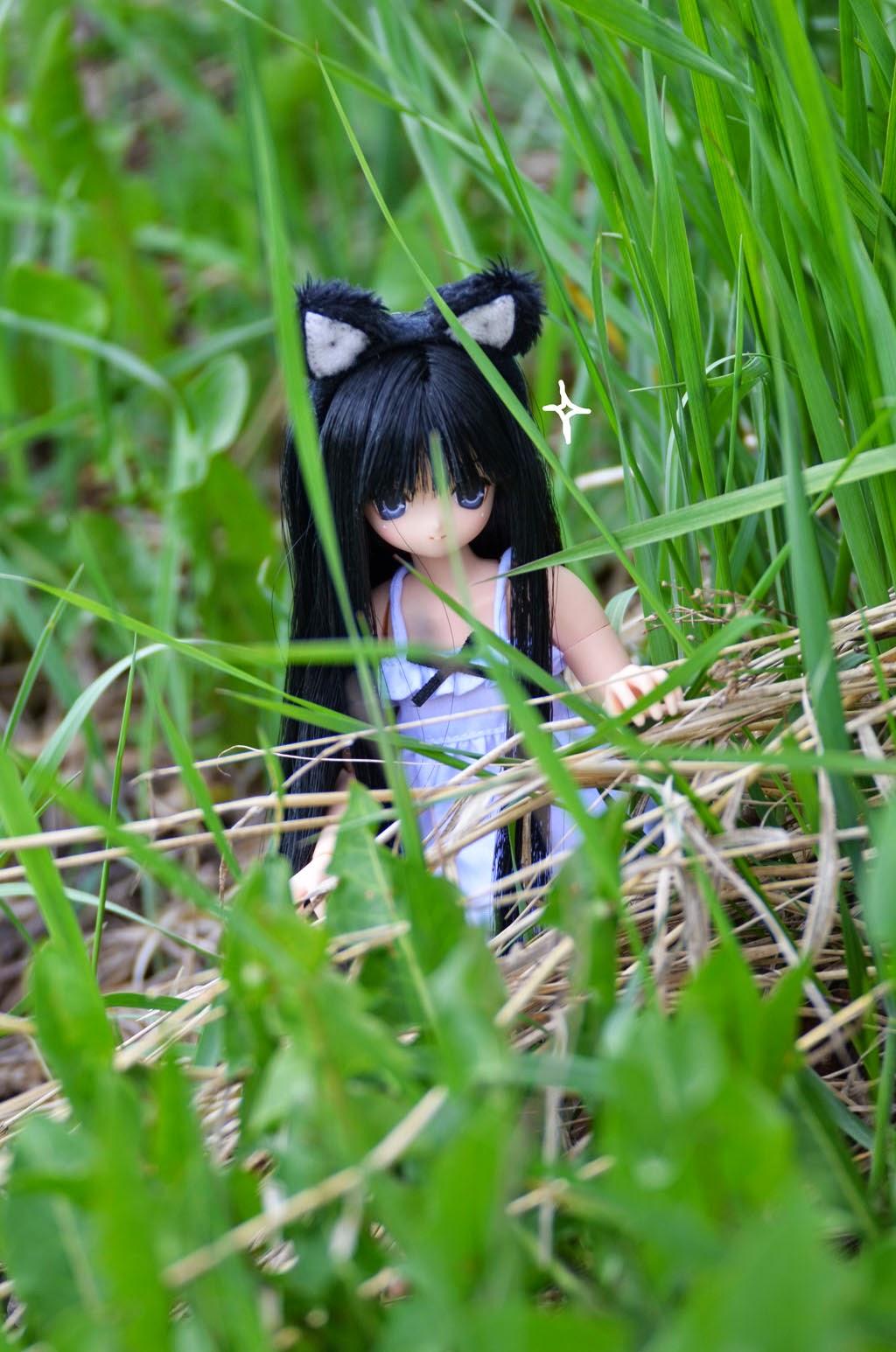 neko-san aika azone doll