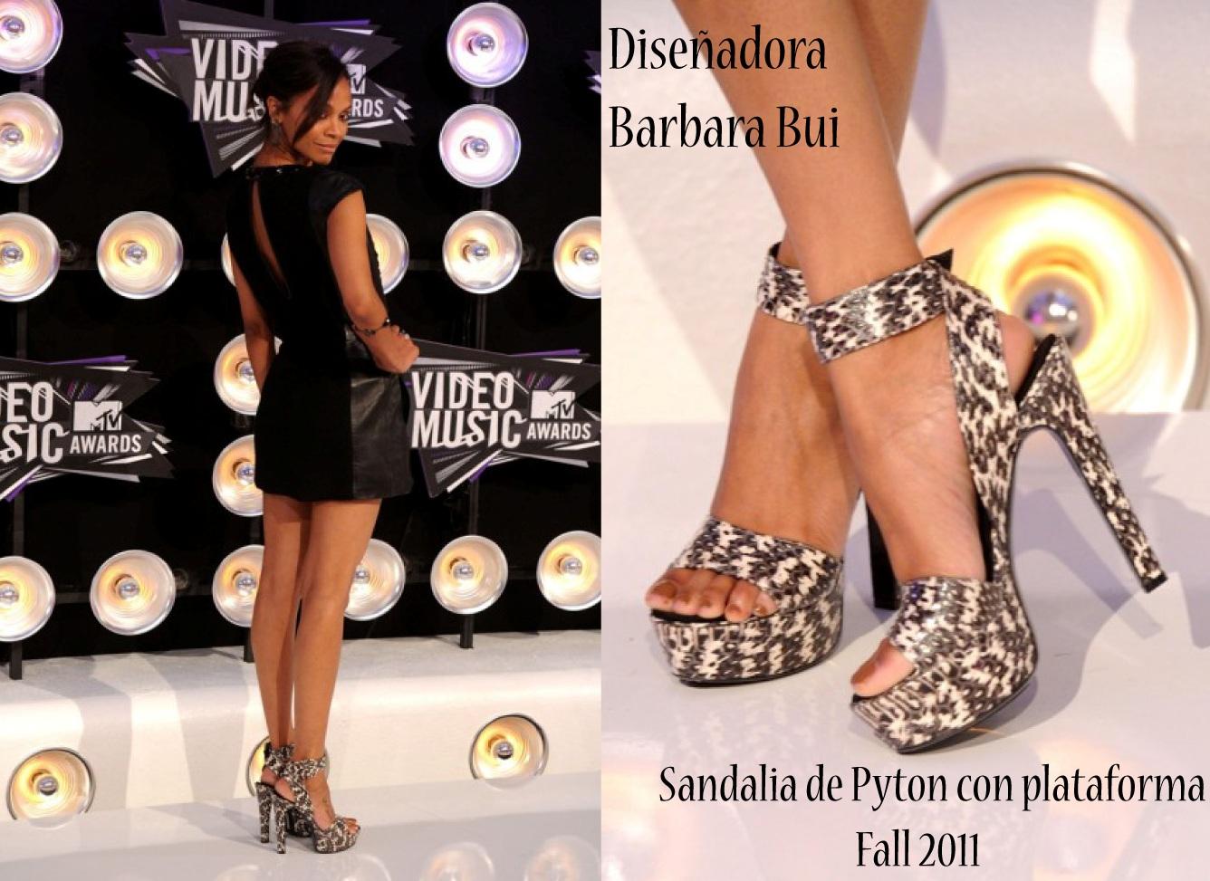 http://2.bp.blogspot.com/-33kcqbR3r9U/Tl15OpDeS0I/AAAAAAAAAd8/kQRSVT_0ixw/s1600/Zoe+Saldana.jpg