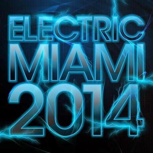 Electric Miami 2014