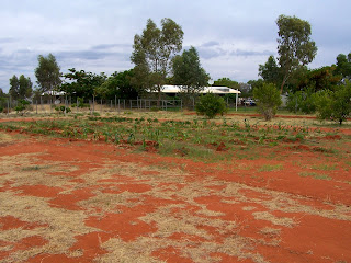 School Vegetable Garden in Central Australia