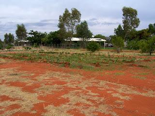 School Vegetable Garden in Central Australia