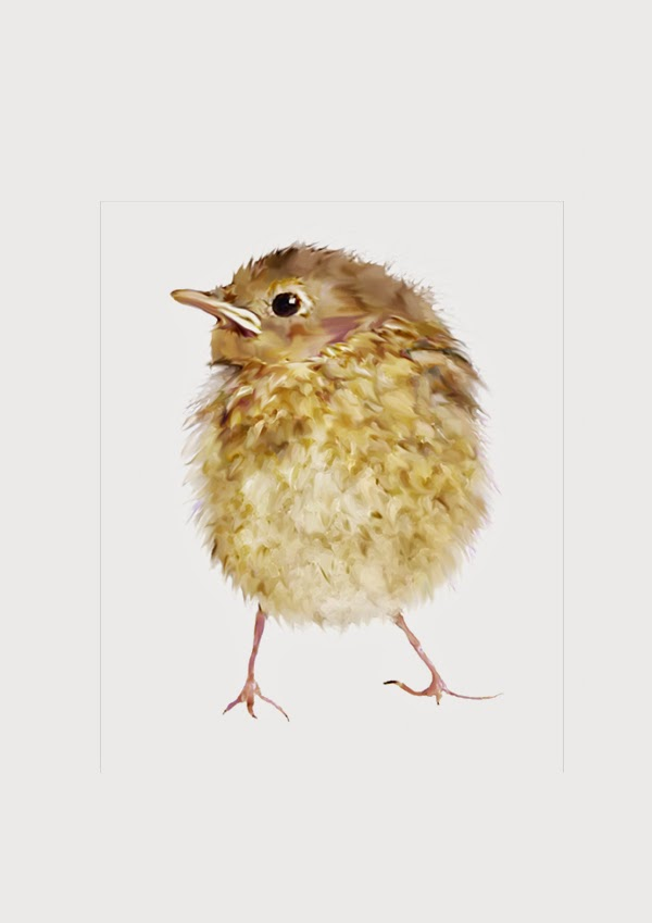 Baby bird by Bamalam Art and Photography