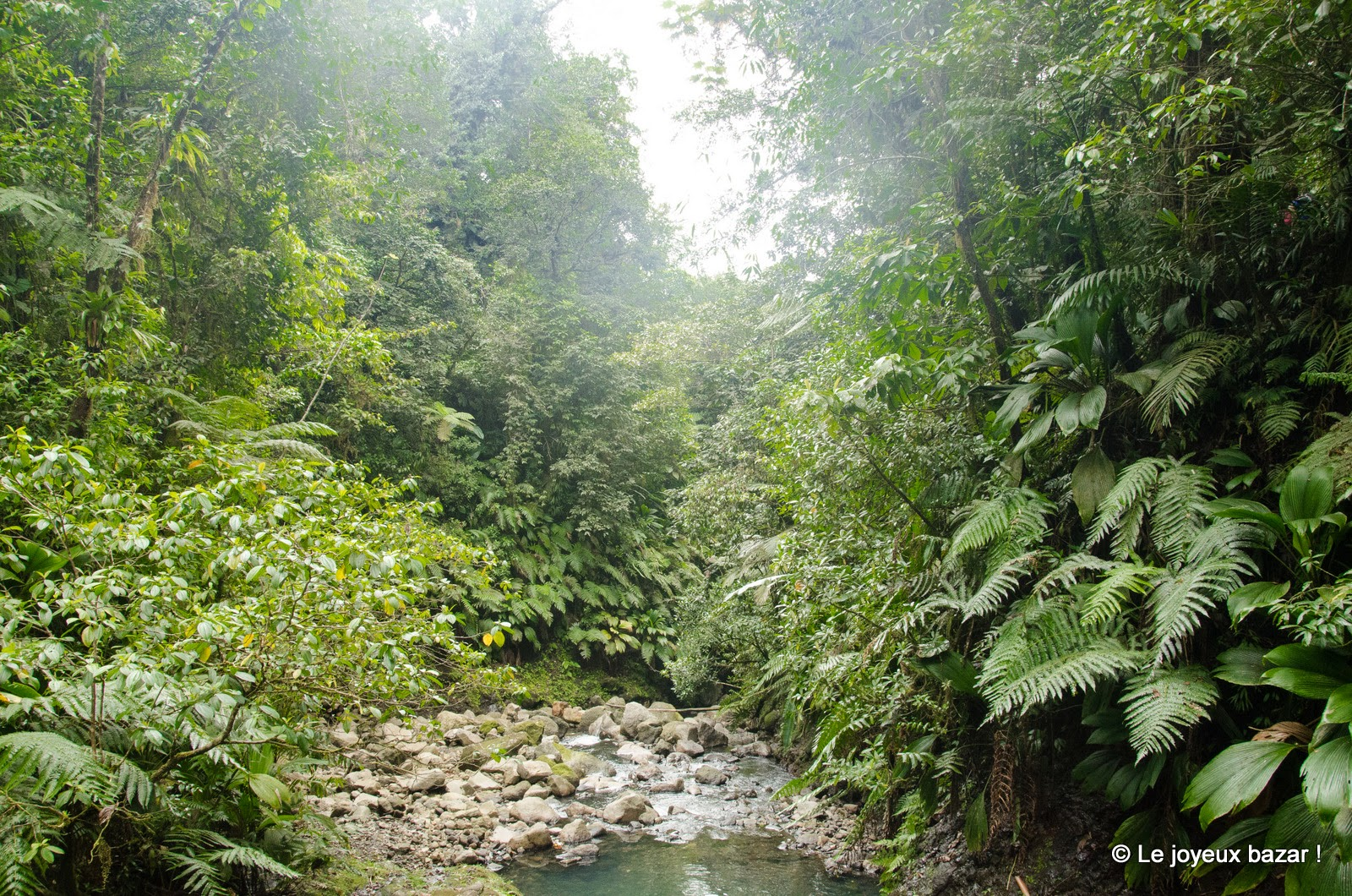 Guadeloupe - les Chutes du Carbet