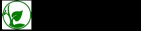 Plant Stevia