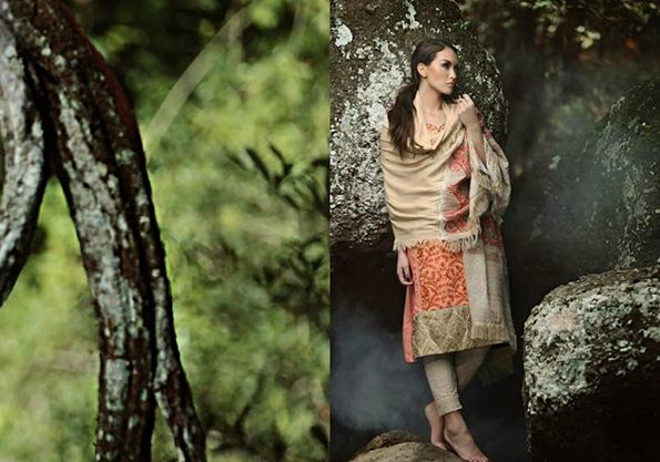 Firdous Winter Wear Dress 2014-2015